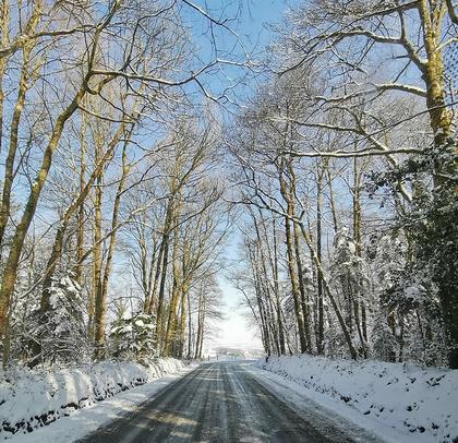 INFO - Il neige en hiver : chute de neige et verglas, adoptez les bons réflexes.